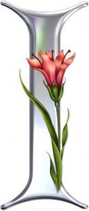 花卉I边框素材