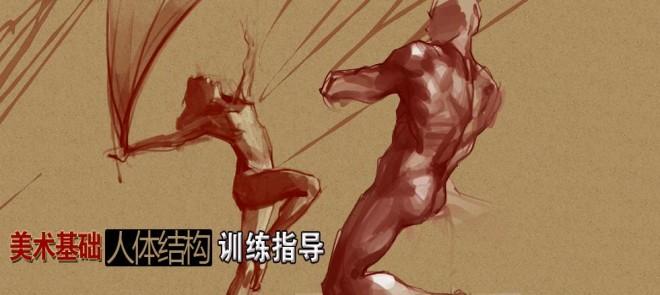 美术基础-人体结构训练指导