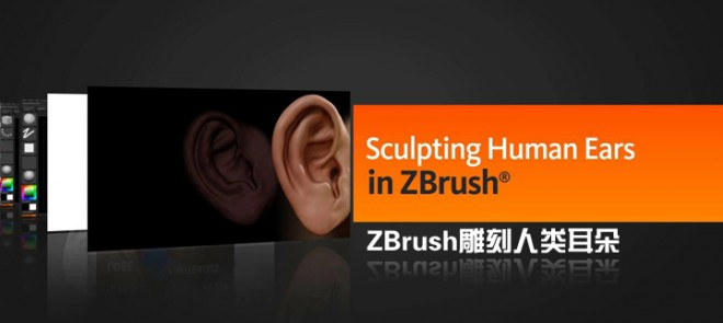 ZBrush雕刻人类耳朵(Digital Tutors出品)