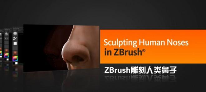 ZBrush雕刻人类鼻子(Digital Tutors出品)