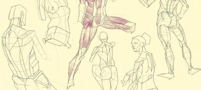 角色头像与人体结构系统