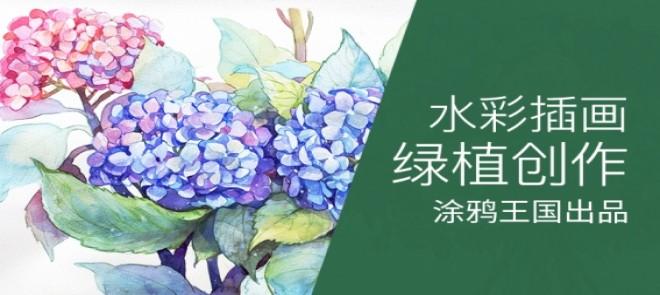 绿植的水彩插画绘制