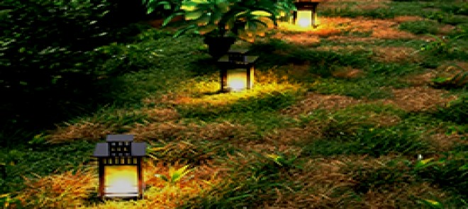 Maya制作写实植物景观教程