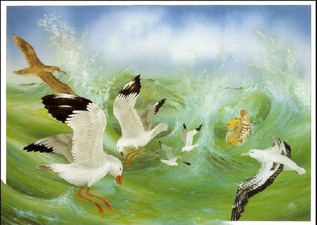 翼狐学院 交流区 动物绘画  2013-11-28 10:28回复         【作品】