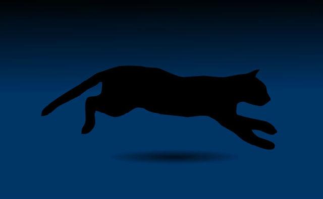 黑猫奔跑flash矢量动画素材下载