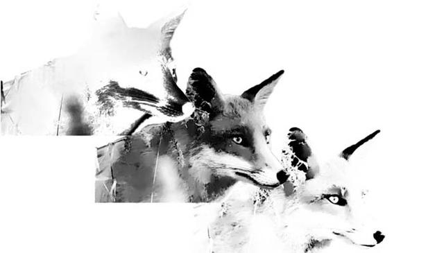ps八步制作水彩效果狐狸头像