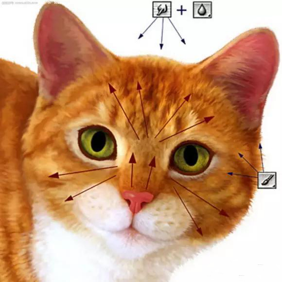 制简单可爱小猫咪