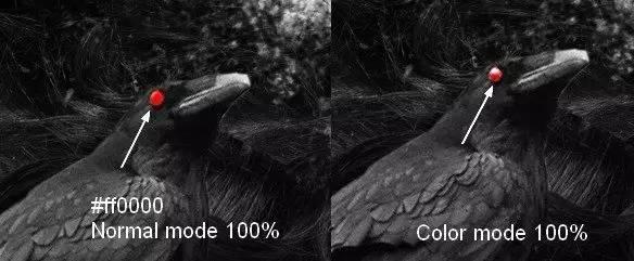 photoshop图文教程 ps合成破碎的抽象暗黑系女王  用画笔在眼睛和乌鸦