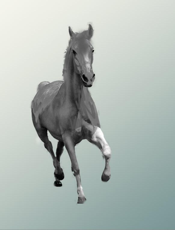 图形创意动物渐变