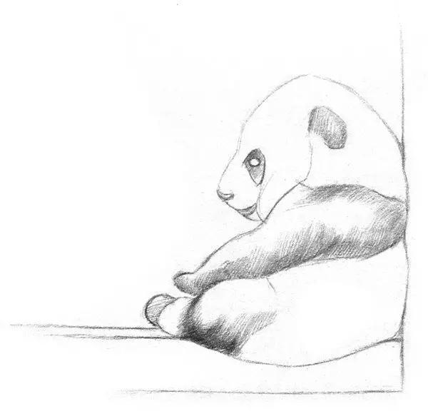 熊猫素描画法步骤图解
