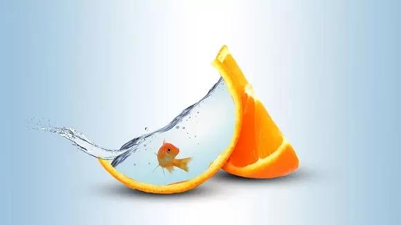 ps教程:创意合成,合成一只橙皮鱼缸