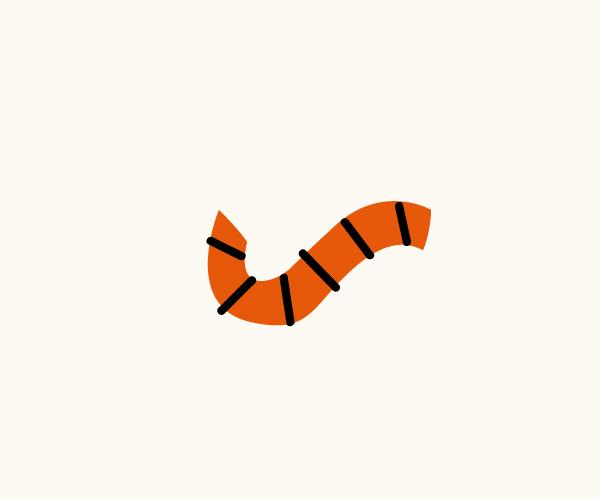 计一只漂亮的小老虎