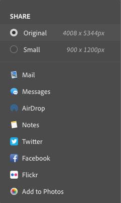 macOS 上的共享选项