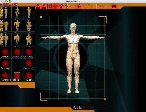 根据男女体型的需求,而去变化整个骨架的形态