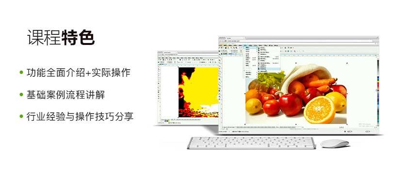 CorelDRAW X8零基础入门自学教程特色
