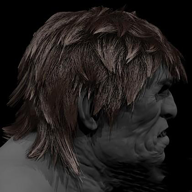 Maya的xGen制作逼真的毛发最终效果图