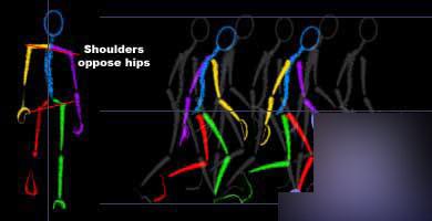 Maya制作走路动作循环动画具体步骤之设置前膝与头部、肩的姿势