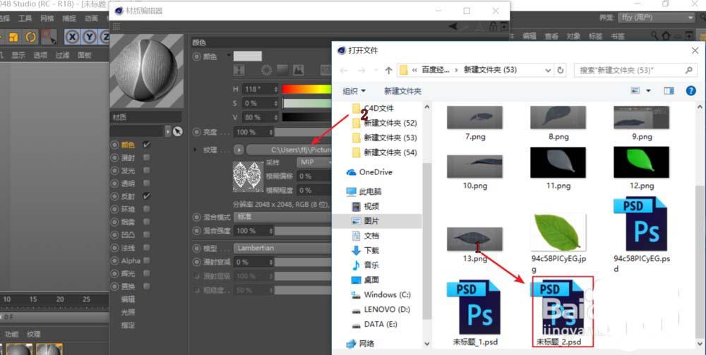 C4D给树叶添加纹理贴图的具体步骤之加载叶子纹理