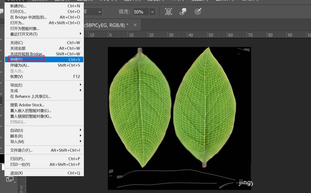 C4D给树叶添加纹理贴图的具体步骤之等到叶子纹理