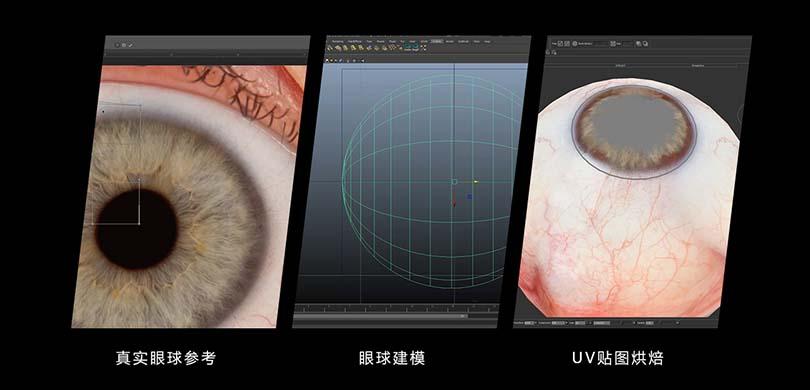 人体眼球模型制作主要因素