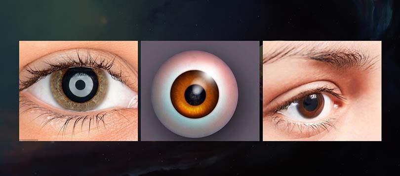 高逼真人体眼球模型创建全流程教程教程介绍