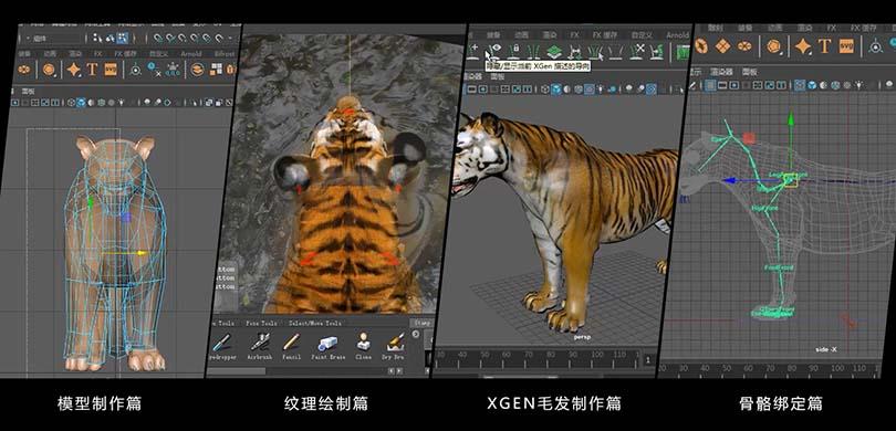 高精度影视动物模型创建四大模块