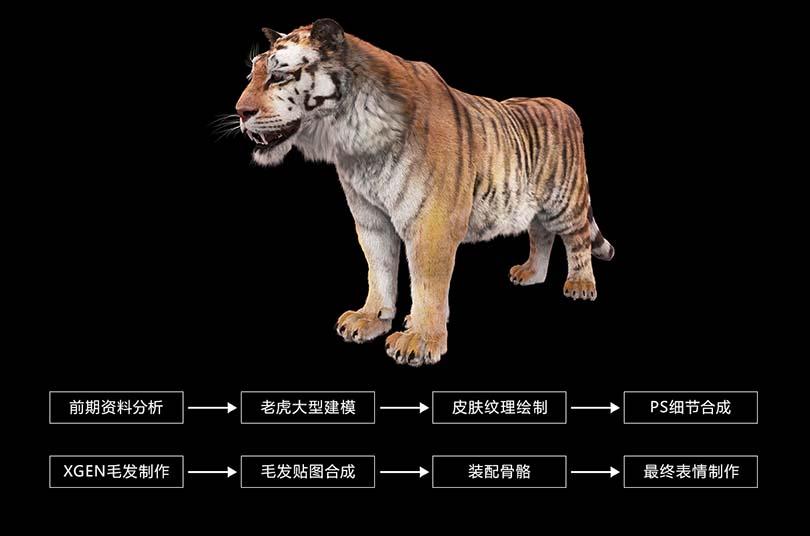 高精度影视动物模型创建全流程教程介绍