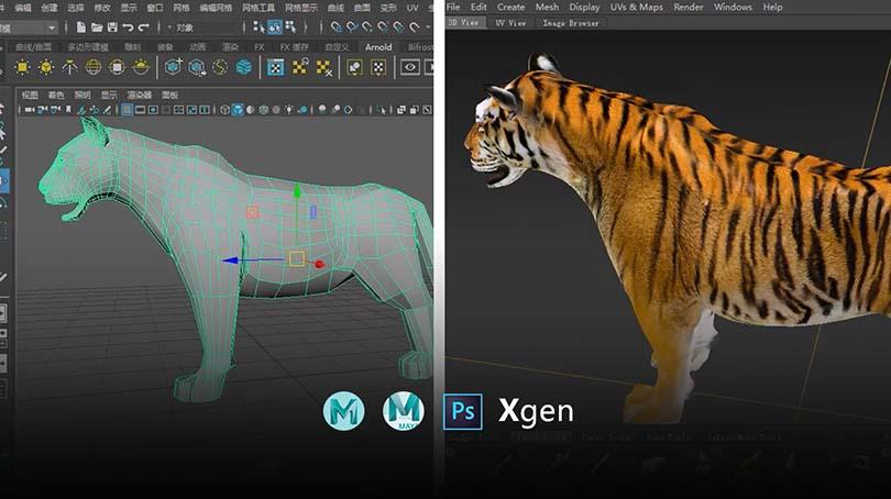 高精度影视动物模型创建全流程教程创建技巧