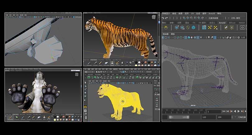 高精度影视动物模型创建过程