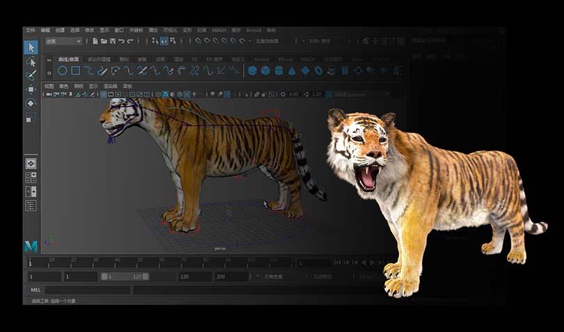 高精度影视动物模型创建技巧