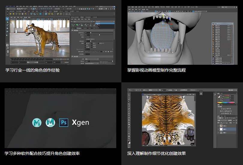 高精度影视动物模型创建收全流程教程学习收获