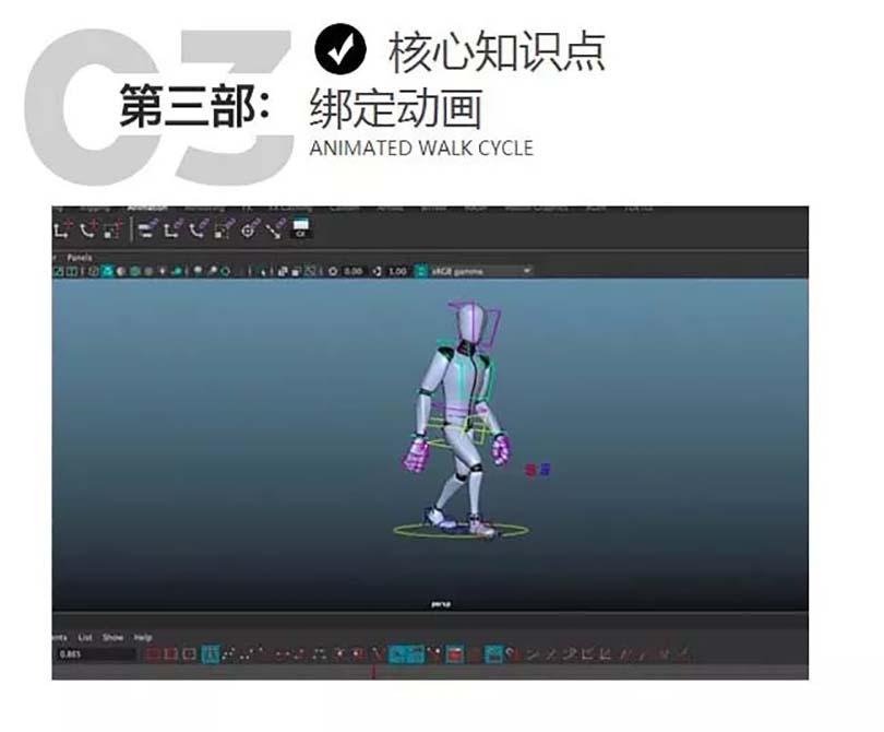 3D动画核心知识点之绑定动画