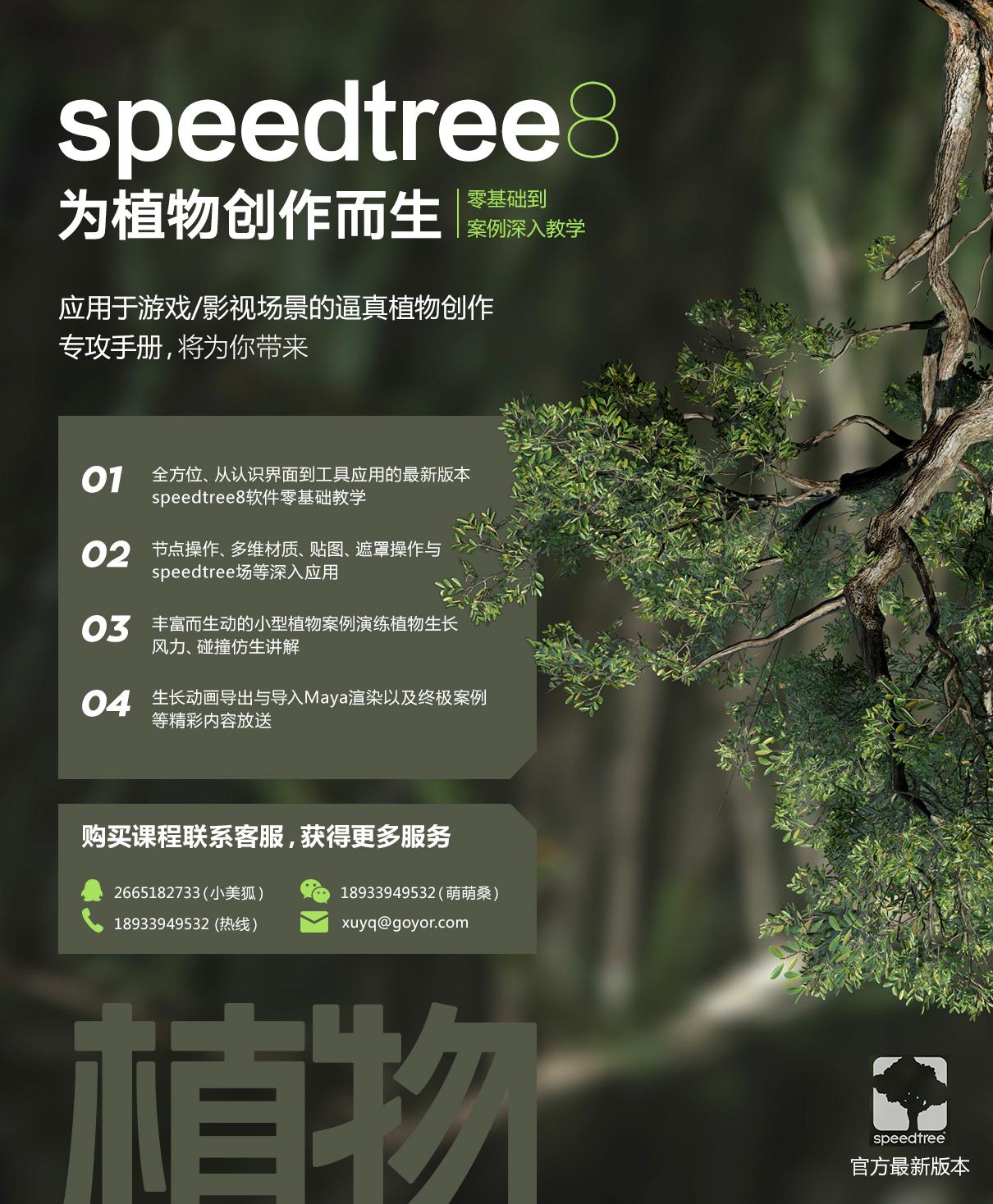 植物创作-大图.jpg