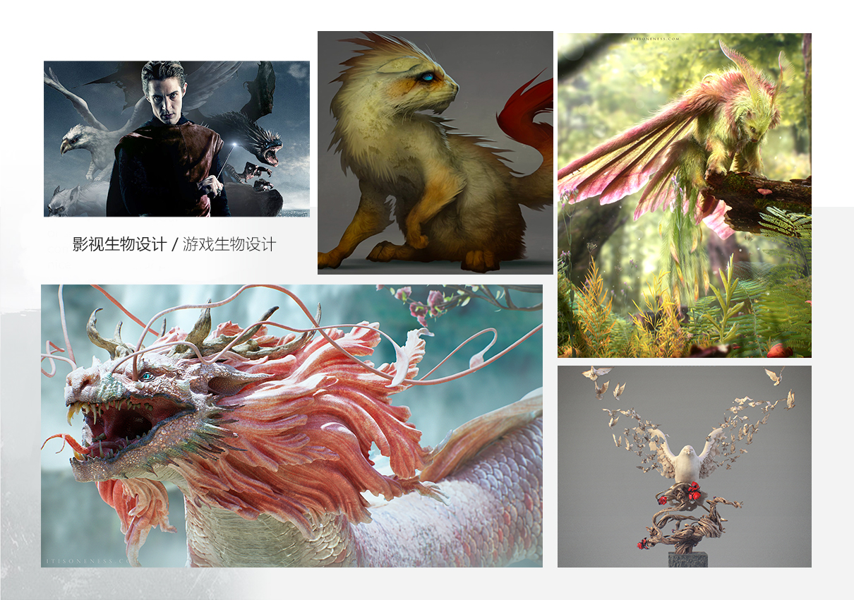《亚洲龙》—制作复杂生物造型与贴图技术教学【实名认证】 zbrush教程 第1张