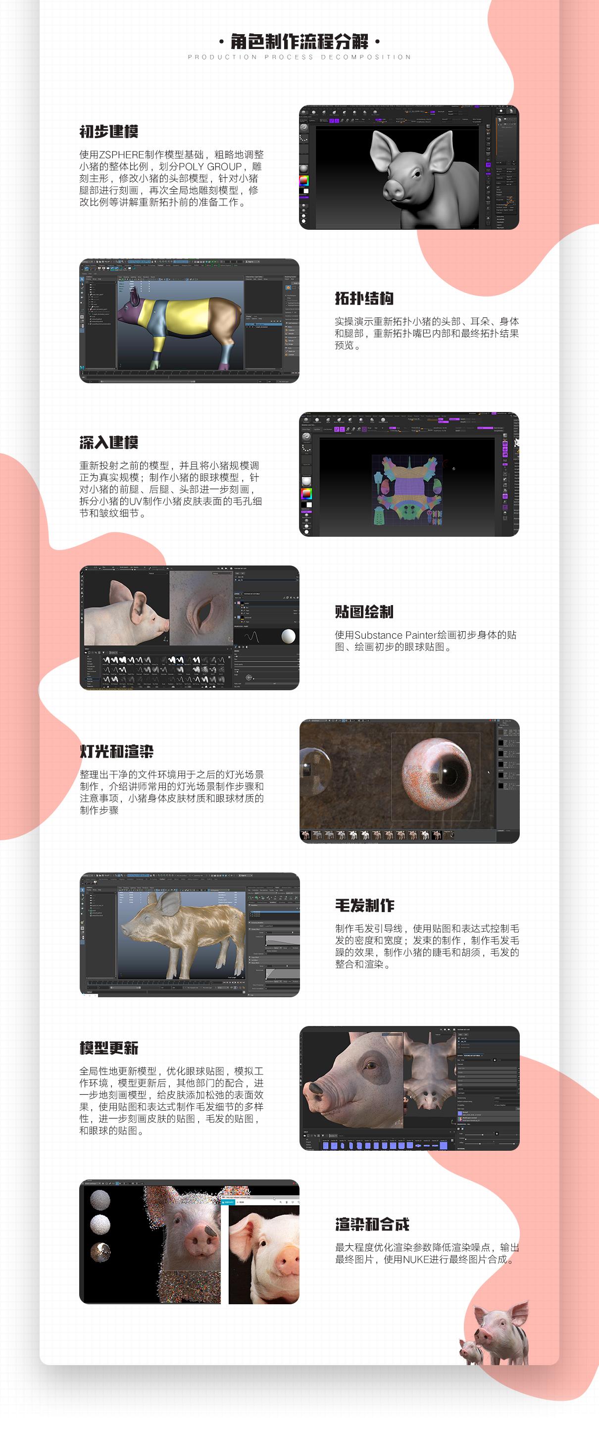 猪_03.jpg