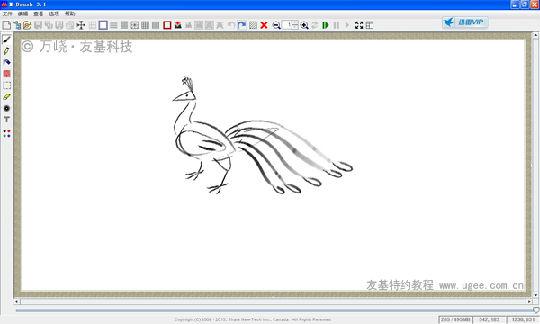 笔画孔雀的画法步骤
